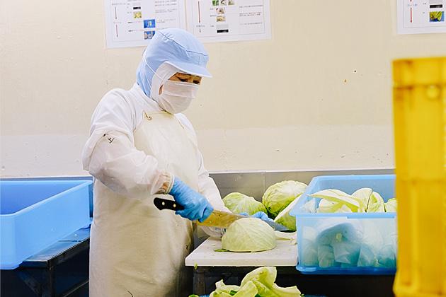 野菜カット処理工程